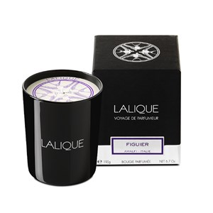 Lalique Fig Tree Amalfi Italy Scented Candle