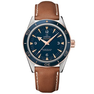 Omega Seamaster 300 Co-Axial Master Chronometer 41mm Titanium & Sedna™ Gold